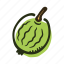 avenue, bush, dessert, food, fruit, garden, gooseberry icon