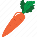 carrot, cooking, drink, food, fruit, vegetable icon