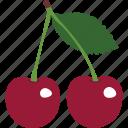 berries, cherries, cherry, food, restaurant, sweet icon