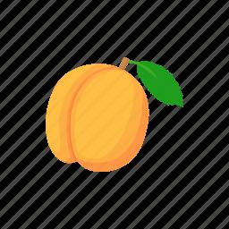 apricot, cartoon, fruit, ripe, white, yellow icon