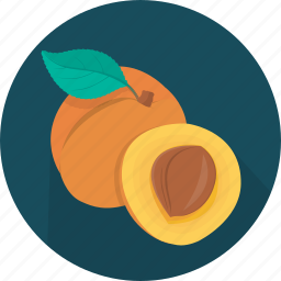 apricot, cooking, food, fruit, kitchen, meal, plant icon
