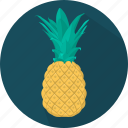 food, fruit, pineapple, plant, meal, kitchen, cooking