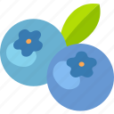 berries, bilberry, blueberries, blueberry, dessert, fruit icon