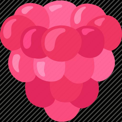 berry, dessert, fruit, raspberry, red, sweet icon
