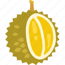 durian, exotic, fruit, smelly, tropical icon