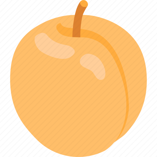 apricot, fruit, nectarine, peach, summer, sweet icon