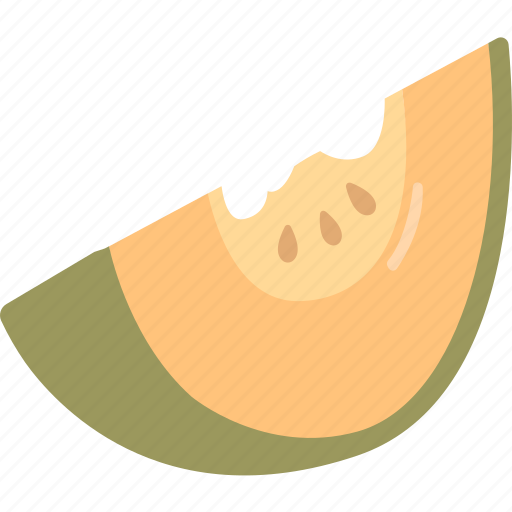 cantaloupe, honeydew, melon, muskmelon, rock, rockmelon icon