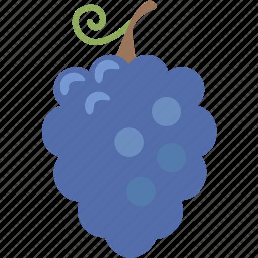 bunch, grape, grapes, table, vine, vinyard, wine icon