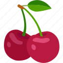 berries, cherries, cherry, fruit, ornamental, sweet, wild icon