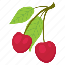 cherry, fruit mix, fruits, leaf, vegetarian, vitamins, with icon