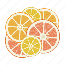circle, citrus, fruit mix, fruits, grapefruit, lemon, orange icon