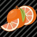 fruit combination, fruit mix, fruits, grapefruit, grapefruit half icon