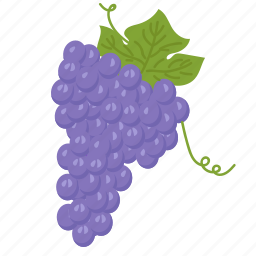 fruits, grapes, grapes blue, vegetarian, vitamins icon