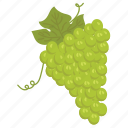 fruit mix, fruits, grapes, green, vegetarian, vitamins icon