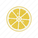 circle, citrus, lemon, lemon circle, raw food, vegetarian, vitamins icon
