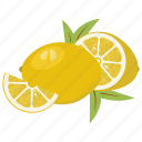 citrus, fruit mix, fruits, juice, lemon, vegetarian, vitamins icon