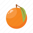 citrus, fruit mix, fruits, orange, raw food, vegetarian, vitamins icon