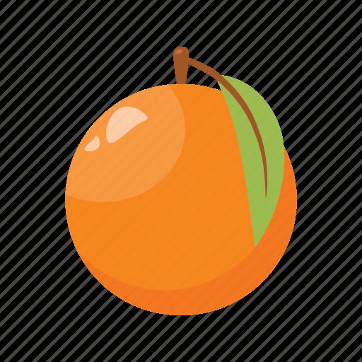 citrus, fruit mix, fruits, orange, raw food, vegetarian, vitamins icon