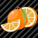 citrus, fruit mix, fruits, lime, orange, vitamins, yellow icon