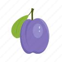 fruit mix, fruits, nature, plum, purple, summer, sun icon