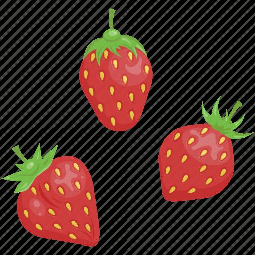 dessert, fruits, organic, raw food, strawberry, vegetarian, vitamins icon