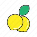 collection, food, fresh, fruit, fruits, health, lime icon