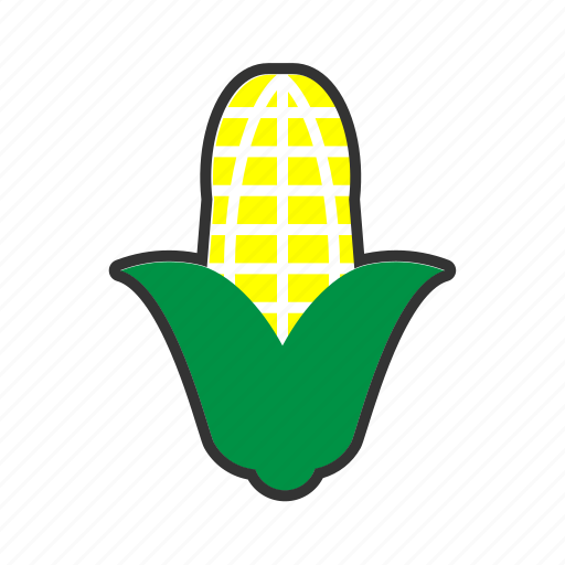 collection, corn, food, fresh, fruit, fruits, korn icon