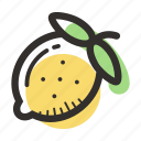 food, fruit, health, juice, lemon, sour, tropical icon