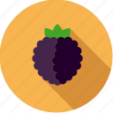 blackberry, brambleberry, food, fresh, fruit icon