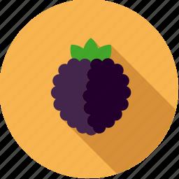 blackberry, brambleberry, food, fresh, fruit icon