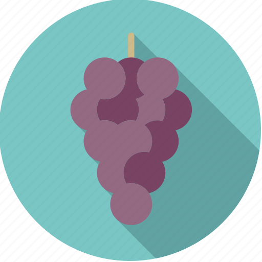 blue, food, fresh, fruit, grapes, red, wine icon