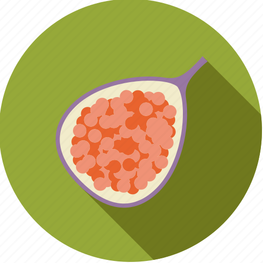 exotic, fig, food, fresh, fruit, half, tropical icon