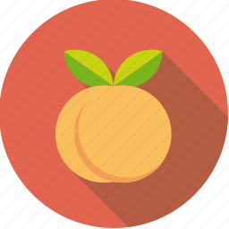 apricot, food, fresh, fruit, peach icon