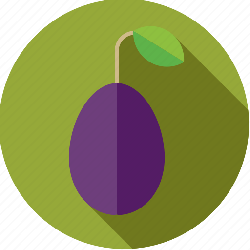 food, fresh, fruit, plum, purple icon