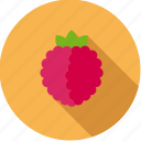 food, fruit, raspberry, red icon