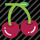 berry, food, fresh, fruit, cherry icon