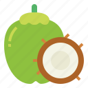 coco, coconut, food, fruit, tropical icon