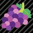 berry, food, fresh, grape, fruit icon