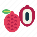 food, fresh, fruit, lychee, tropical icon