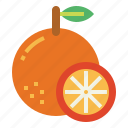 citrus, food, fresh, fruit, orange icon