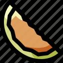food, fresh, fruit, melon, organic, slice, tropical
