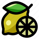 citrus, drink, food, fruit, healthy, lemon, lime