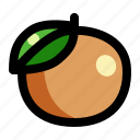 citrus, fresh, fruit, lime, orange, organic, tropical