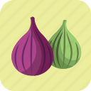 diet, figs, food, fruits, green, sweet, violet icon