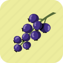 berry, blue, current, food, fruit, tasty icon