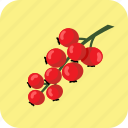 berry, currant, food, fruit, red, summer, tasty icon