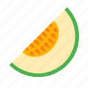 food, fruit, melon