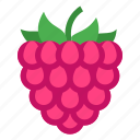 food, fruit, raspberry icon