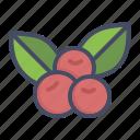berries, berry, cherries, cherry, fruit