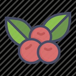 berries, berry, cherries, cherry, fruit icon